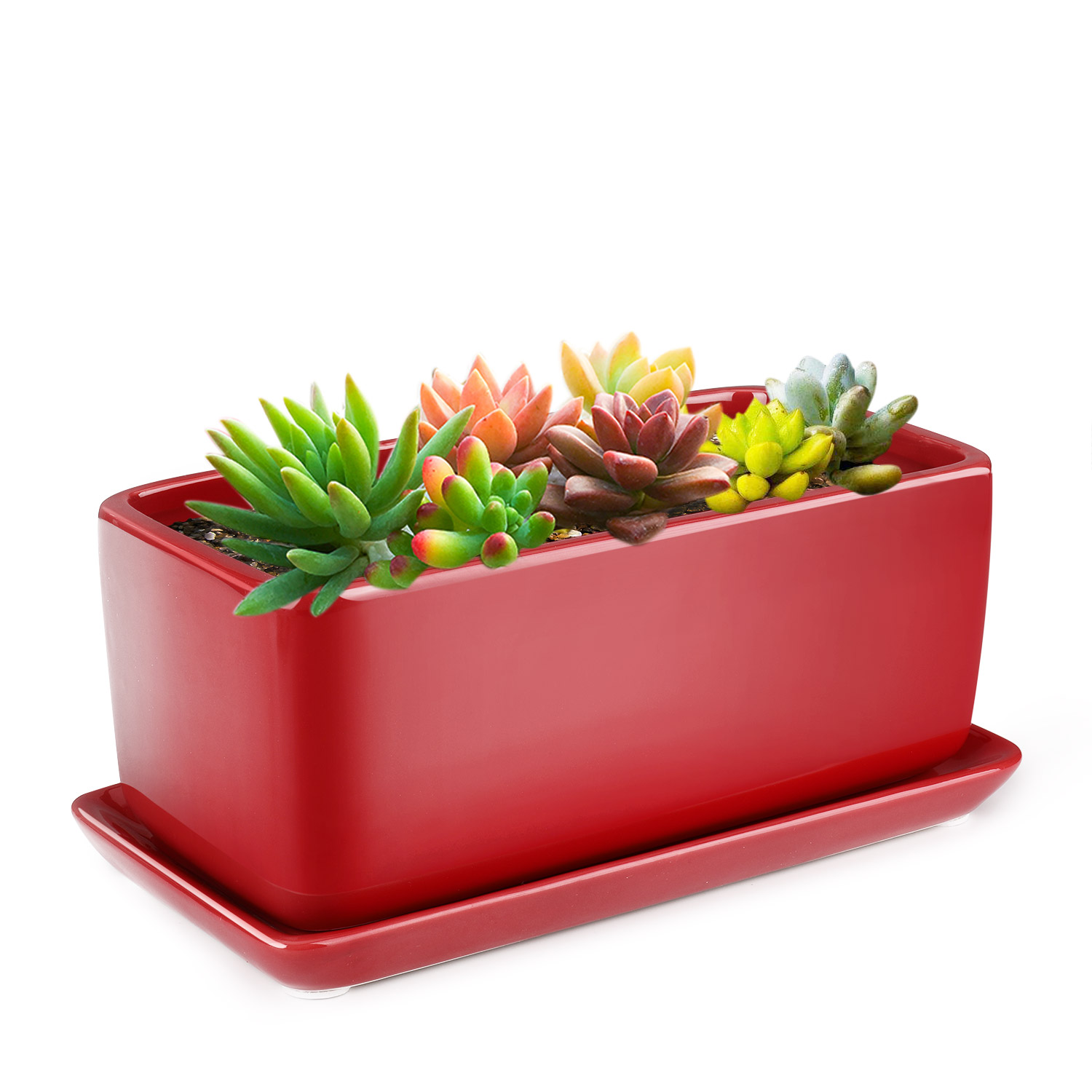 10 Rectangular Ceramic Succulent Planter Pot Container Window Box With Tray Ebay